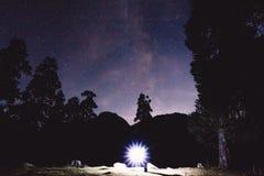 银河、人树和剪影有光的在山 背景美好的图象安装横向晚上照片表使用 库存照片