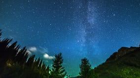 银河上升在前景的杉树 4K TimeLapse - 2016年9月,阿尔玛蒂和阿斯塔纳,哈萨克斯坦 股票视频