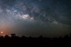 银河的夜空风景在森林上的 免版税库存图片