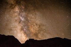 银河金Basin国王 免版税库存图片