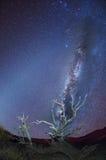 银河 免版税图库摄影