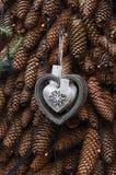 银的心脏在杉木锥体背景的  免版税图库摄影
