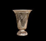从银的花瓶 图库摄影