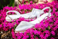 银穿上鞋子意大利人鞋子妇女鞋子 图库摄影
