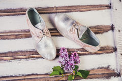 银穿上鞋子意大利人鞋子妇女 图库摄影