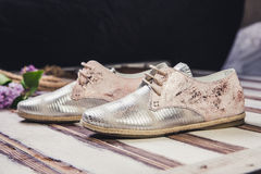 银穿上鞋子意大利人鞋子妇女 免版税库存图片