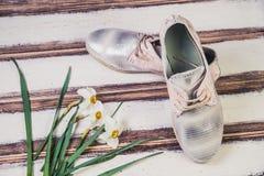 银穿上鞋子意大利人鞋子妇女 库存照片