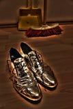 银色鞋子 免版税库存照片