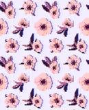 银莲花属花无缝的样式 免版税库存照片