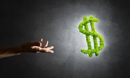 银行业务和投资的概念由在具体背景的绿色美元标志提出了 库存图片