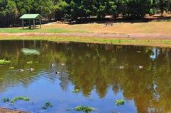 银行国家(地区)公园河 免版税图库摄影