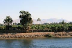 银行西方的尼罗河 库存图片