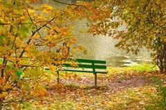 银行长凳绿色池塘 免版税库存图片