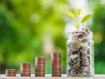 铸造概念保证金堆保护的节省额 企业概念生长 金钱硬币stac 图库摄影