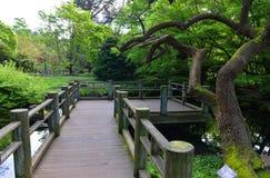 铺在日本庭院里 免版税图库摄影