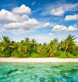 铺沙与棕榈树和多云蓝天的海滩 热带的海岛 库存照片