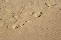 铺沙与波形的样式、脚印和贝壳的背景 免版税库存图片