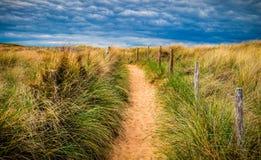 铺沙与海滩草的海滩的道路 对宽含沙beache的方式 图库摄影
