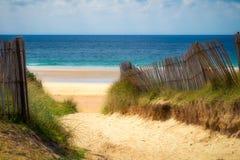 铺沙与海滩草的海滩的道路 对宽含沙beache的方式 免版税库存照片