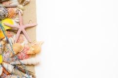 铺沙在白色背景的海星贝壳与一个捕鱼网 免版税库存图片
