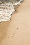铺沙海运 库存照片