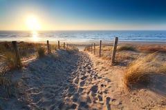 铺沙海滩的道路在北海 免版税库存图片