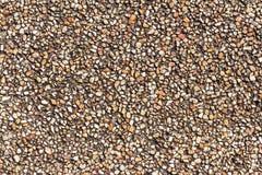 铺沙石小卵石纹理或铺沙室内设计事务的石小卵石背景 外部装饰设计 图库摄影