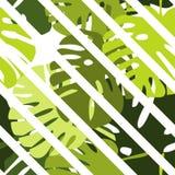 铺磁砖与绿色异乎寻常的叶子和白色条纹背景的热带传染媒介样式 向量例证