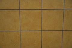 铺磁砖在大厦被召集的黄色颜色的房屋板壁 图库摄影