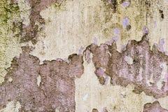 铺磁砖的墙壁的织地不很细背景有湿气踪影的以绿色真菌垂直的形式追踪 切削 库存图片
