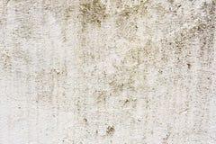 铺磁砖的墙壁的织地不很细背景有湿气踪影的以绿色真菌垂直的形式追踪 grunge 免版税图库摄影