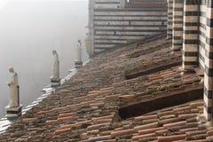 铺磁砖的屋顶和大理石象的看法在中央寺院二锡耶纳的 圣玛丽亚Assunta大城市大教堂  托斯卡纳 意大利 库存照片