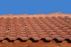 铺磁砖的屋顶 免版税库存照片