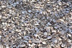 铺背景的被击碎的白色贝壳 免版税图库摄影