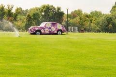 铺路石自然树有花的绿草汽车 库存照片