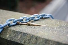 链和干树叶子 免版税库存图片