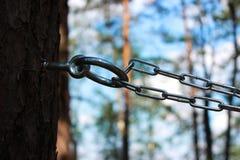 链子和圆环对杉木修理人和鞭打的 施虐受虐狂,报告文学摄影的概念 免版税库存照片