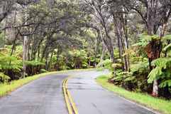 链火山口夏威夷国家p路火山 免版税库存照片