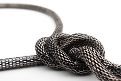 链蛇 库存照片
