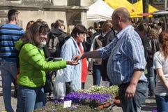 销售供营商和买家在花市场,芒斯特上 免版税库存图片
