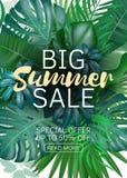 销售垂直的横幅、海报与棕榈叶,密林叶子和手写字法 花卉热带夏天背景 向量例证