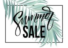 销售横幅、海报与棕榈叶,密林叶子和手写字法 花卉热带夏天背景 向量 向量例证