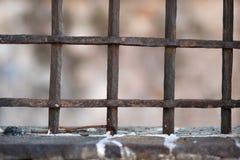 锁和篱芭 免版税库存照片