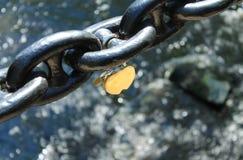 锁在链子 库存照片