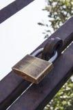 锁在门 库存图片