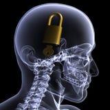 锁着的头脑光芒概要x 库存照片