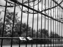 锁着-爱处于危险中 免版税库存照片