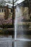 锋利的水滴公园池塘 免版税库存图片