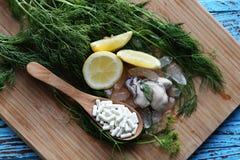 锌补充白色胶囊用在块木头的新鲜的牡蛎 免版税库存图片