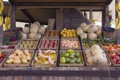 错误水果和蔬菜在一个摊位在商展2015年 库存图片